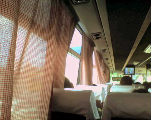 Bus curtains are the same pattern/cloth as my high school uniform.